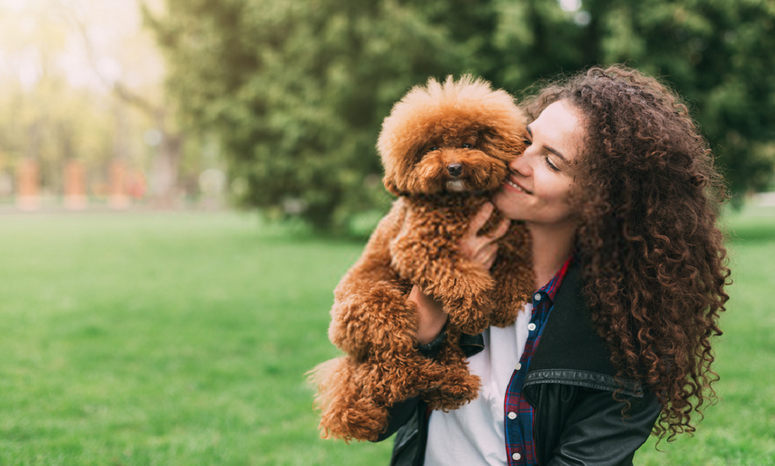7 Things to Consider Before Becoming a Pet Owner