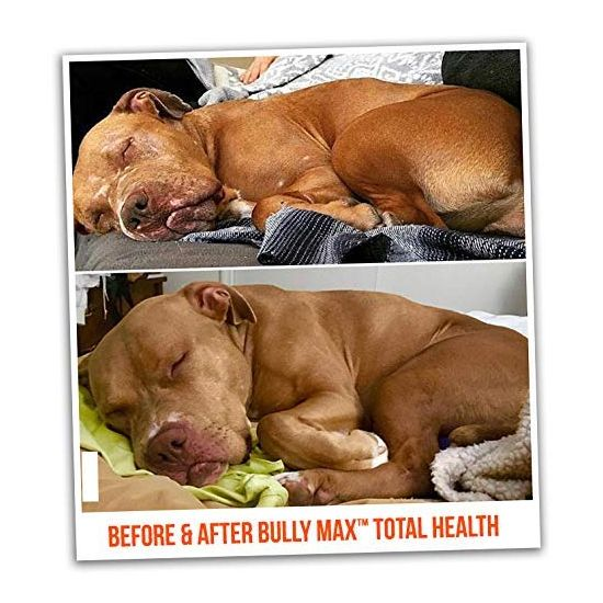 Bully Max Total Health Supplement For Dogs 368Gm