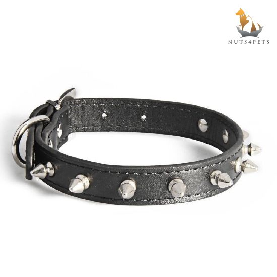 Nuts4Pets Leather Stud Collar