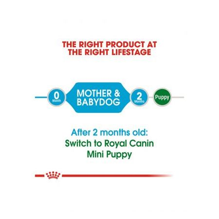 Royal Canin Mini Starter For Gestating/Lactating Mother Dog & Upto 2 Months Baby Dog